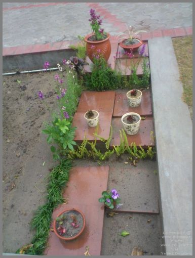 garden-decoration-ideas